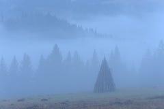与雾的农村风景 库存图片