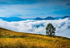 与雾的惊人的山风景 库存照片