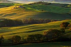 与雾的托斯卡纳风景 在托斯卡纳风景的日出早晨 多小山草甸田园诗看法在美好的早晨lig的托斯卡纳 免版税库存图片