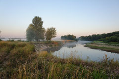 与雾的早晨风景 库存照片