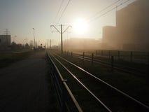 与雾的清早 免版税库存照片