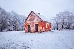 与霜的冬天风景和积雪的树本质上喀尔巴阡山脉的在布拉索夫,斯洛伐克附近的 库存照片