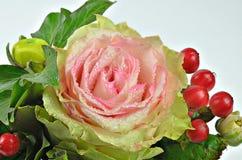 与露滴和红色莓果的桃红色罗斯花 免版税库存图片