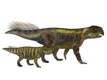 与青少年的Psittacosaurus恐龙 免版税库存图片