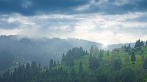 与青山和有薄雾的天际的Carpatian谷 免版税库存照片