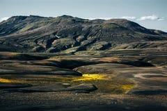 与青苔的风景在冰岛 山和火山区 免版税库存图片