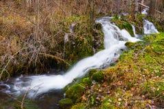 与青苔石头的溪在森林 免版税图库摄影