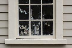 与静物画植物的殖民地房子窗口 免版税库存图片