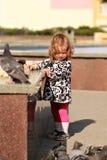 与面包屑的逗人喜爱的小女孩哺养的鸠 库存图片