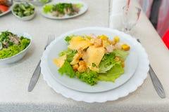 与面包渣乳酪和莴苣特写镜头的开胃肉沙拉 免版税图库摄影
