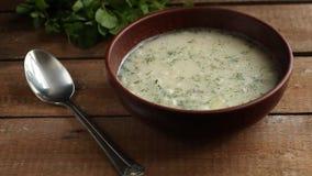 与面团和菜的汤 适当的营养 背景许多饺子的食物非常肉 复制空间 股票录像