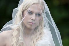 与面纱的年轻新娘画象 免版税库存图片