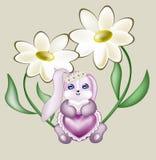 与鞋带心脏的可爱的野兔 库存照片