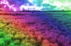 与领域和天空的创造性的动态多彩多姿的抽象背景风景 库存图片