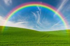 与领域和彩虹的风景 免版税库存图片