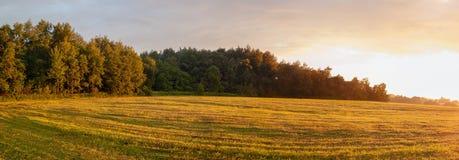 与领域和森林的农村风景 免版税图库摄影