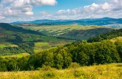 与领域和森林的风景山坡的 库存照片