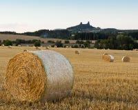 与领域的夏天风景和Trosky防御,捷克 免版税库存图片