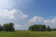 与领域的夏日风景、森林和多云天空和太阳 库存图片
