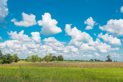 与领域的多云天空 图库摄影