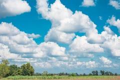 与领域的多云天空 库存图片