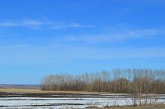 与领域的美好的风景 光秃的树和一点雪 免版税库存图片