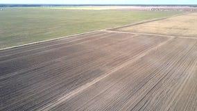 与领域的高鸟瞰图不尽的农村风景 股票视频