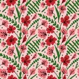 与领域花和草本的无缝的背景 与手拉的鸦片、草和叶子的样式 传染媒介花卉纹理 免版税图库摄影