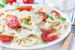 与领带面团、希腊白软干酪、蕃茄、芥末和蓬蒿的意大利面制色拉,水平 免版税库存照片