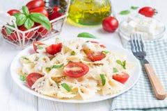 与领带面团、希腊白软干酪、蕃茄、芥末和蓬蒿的意大利面制色拉,水平 免版税图库摄影