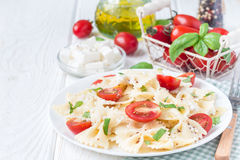 与领带面团、希腊白软干酪、西红柿、芥末和蓬蒿,拷贝空间的意大利面制色拉 库存照片