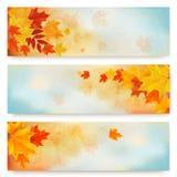 与颜色叶子的三副抽象秋天横幅 免版税图库摄影