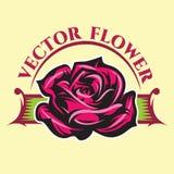 与颜色玫瑰和题字的传染媒介例证 免版税库存照片