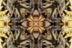 与颜色美丽的装饰物的万花筒  图库摄影