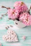 与风信花的背景,杨柳在年迈的杯子和12月开花 免版税库存图片