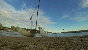 与风帆冲浪的筏、日落天空和城市的有卵石花纹的海岸后面的,旅游业 股票视频