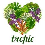 与风格化植物和叶子的热带天堂卡片 向量例证