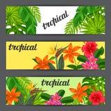 与风格化热带植物、叶子和花的横幅 我 库存例证