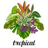 与风格化热带植物和叶子的背景 给的小册子,横幅, flayers,卡片,纺织品做广告图象 免版税图库摄影