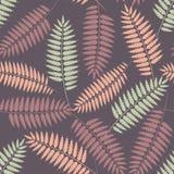 与风格化蕨叶子的无缝的模式 免版税库存照片