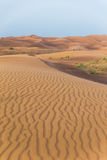与风踪影纹理的沙丘在迪拜 库存图片
