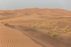与风踪影纹理的沙丘在迪拜 免版税库存图片