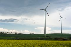 与风车的油菜籽领域 免版税图库摄影