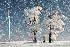 与风轮机的冬天树 库存照片