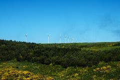 与风轮机的平的高原地区在马德拉岛的海岛的北部的山 免版税库存照片