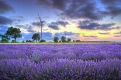 与风轮机的淡紫色领域,保加利亚-日落 免版税库存照片