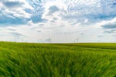 与风轮机的绿色麦田在背景墙纸 库存图片