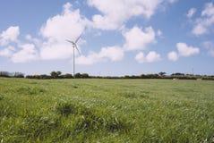 与风轮机的草地在距离 免版税图库摄影