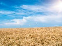 与风轮机的金黄麦田反对蓝天 库存照片