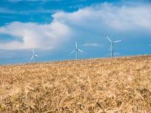 与风轮机的金黄麦田反对蓝天 免版税库存图片